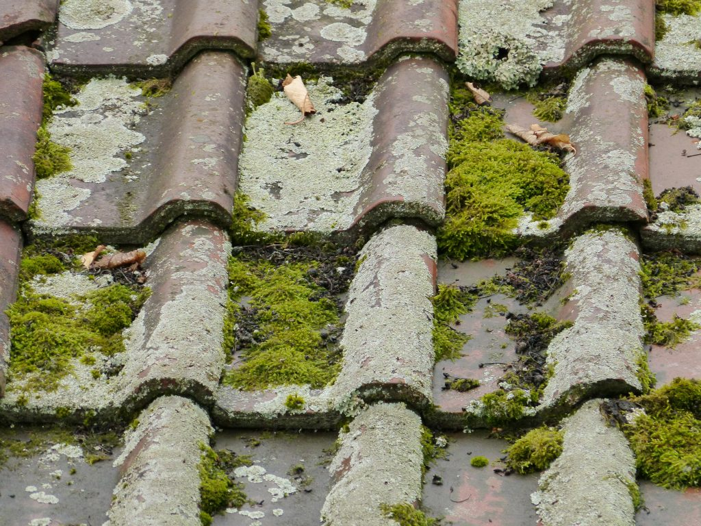 top 10 signs that your roof needs repair