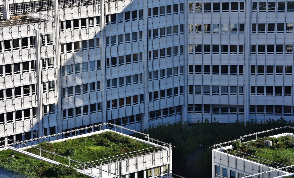 what are green/living roofs